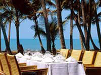 Palm Cove Dining Options